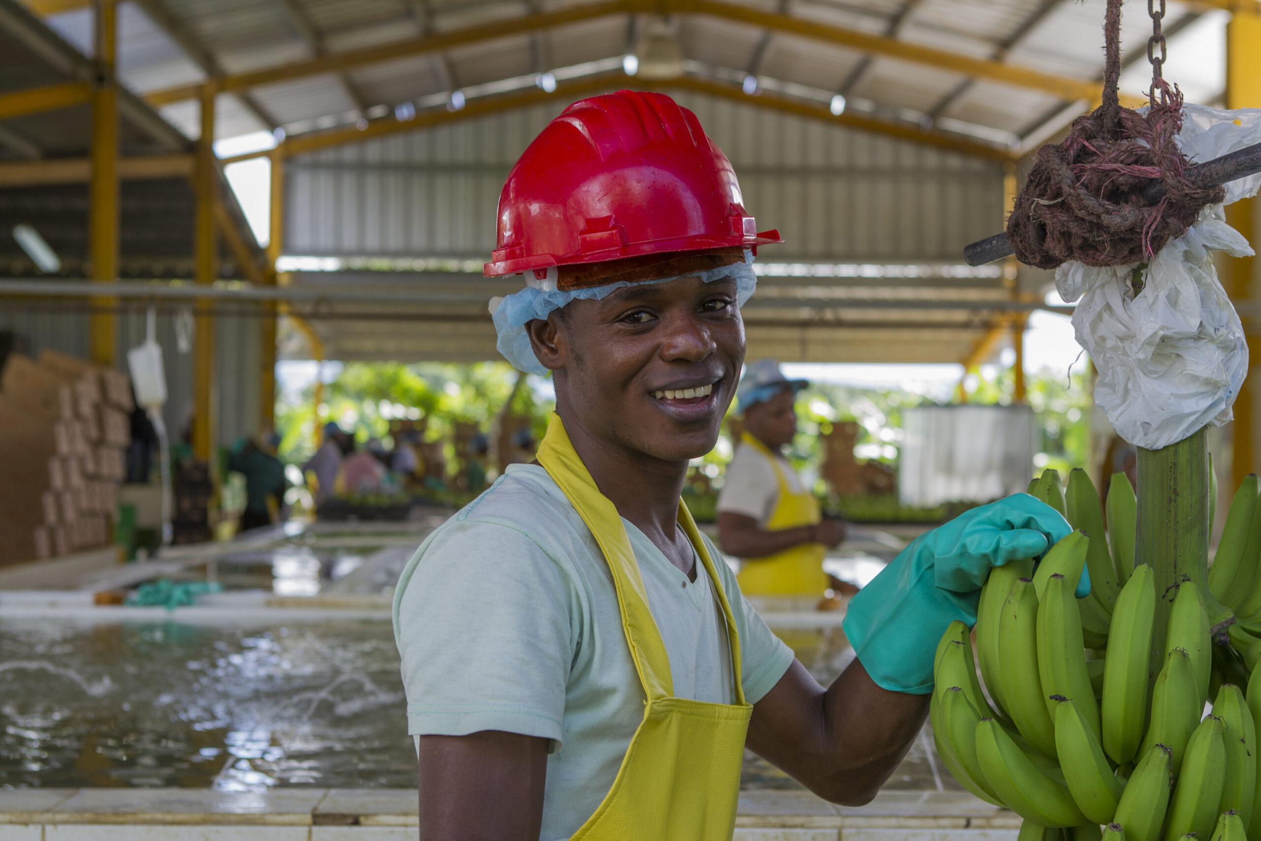 Bananenproduzent 11 © Fairtrade International