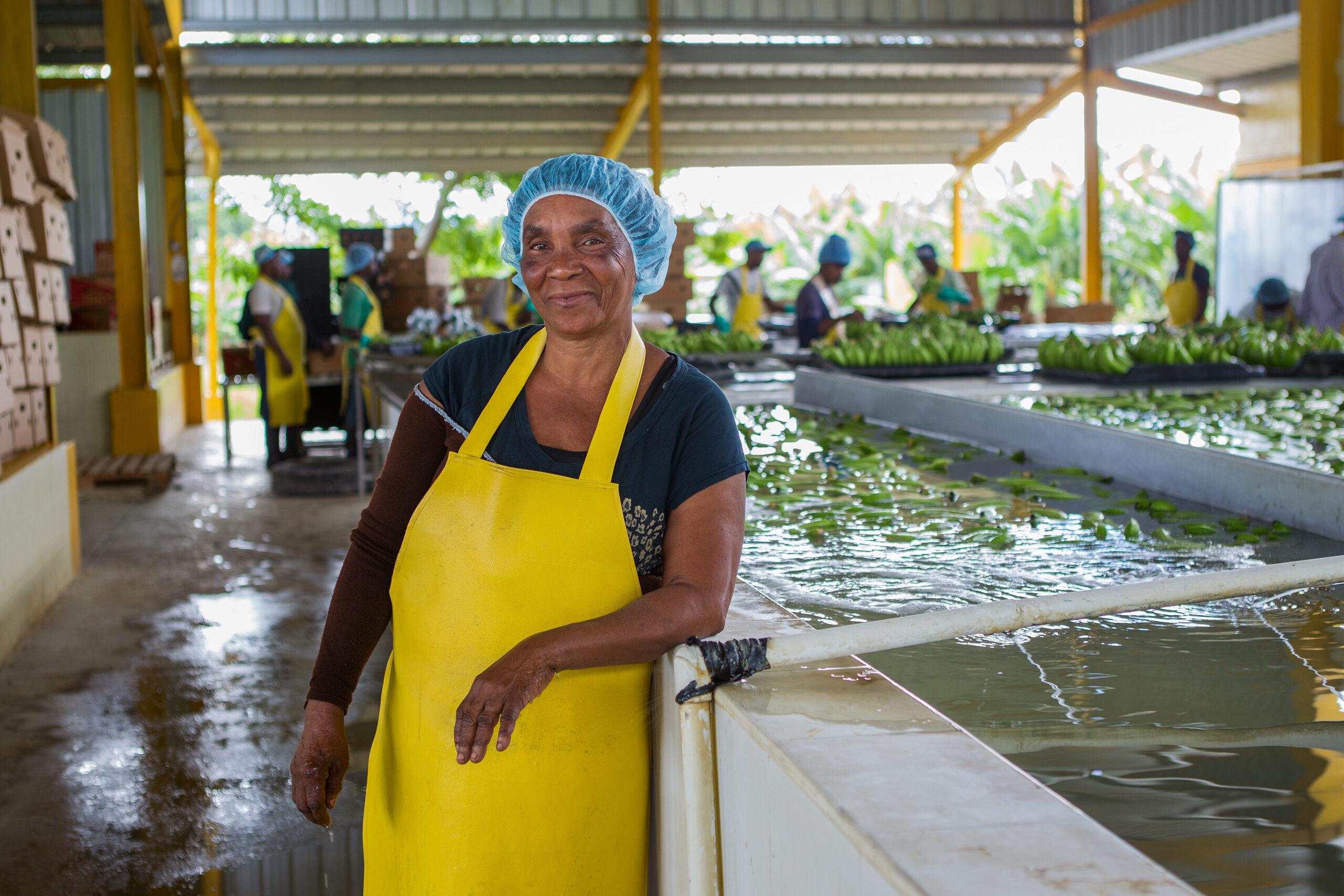 Bananenproduzent 5 © Fairtrade International
